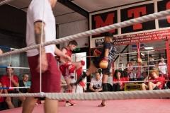 Buell Blocking Low Kick
