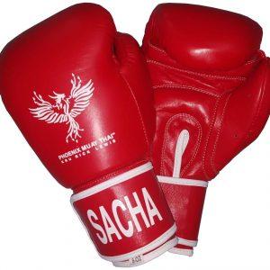 phoenix muay thai leather gloves